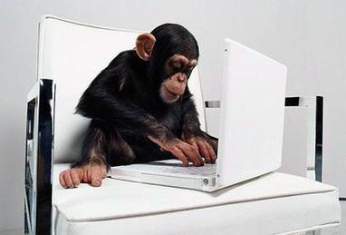 chimppc